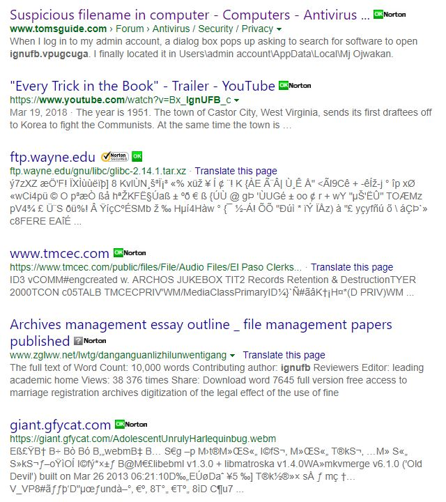 supicious filename | Norton Community